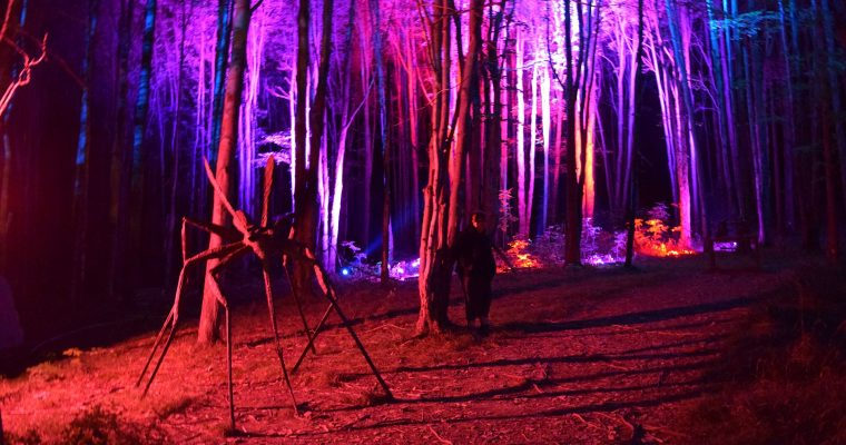 Press Release: NIGHT LIGHTS returns to Griffis Sculpture Park for fifth year