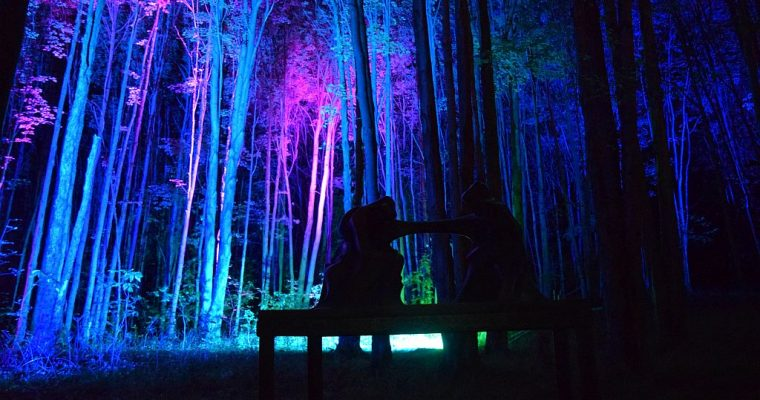 Wonderful 5th season of NIGHT LIGHTS at Griffis Sculpture Park just concluded.