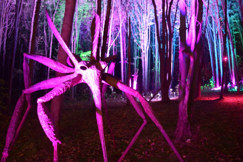 NIGHT LIGHTS returns to Griffis Sculpture Park for sixth year